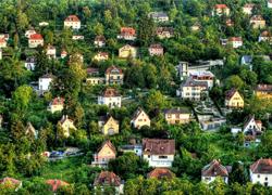 stadt-natur