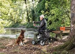 Hund Rollator Wald Senior Mann